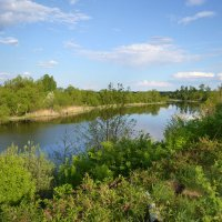 река Медведица :: Надежда Миронова