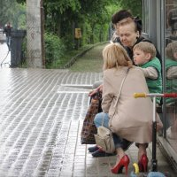 летний дождь :: sv.kaschuk