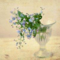 мелодия весны... :: Natali-C C