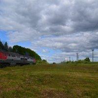Наперегонки с облаками. :: zoja