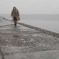...плохая погода :: Сергей Долженко