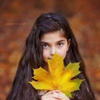 Листья осенние :: Mila Popova