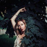 Фея в лесу :: coolmarat Аров