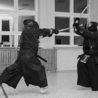 Кендо.Путь меча. :: Владилен Панченко