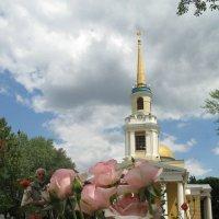 Божественные розовые розы :: Алекс Аро Аро