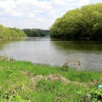 На реке. :: Борис Митрохин