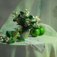В зелёных тонах :: Вера