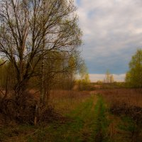 Весна на окраине заброшенной деревни :: Alexander Petrukhin