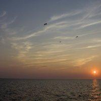 Закат над Ладогой. :: Ольга Лиманская