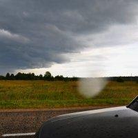 Кажется дождь начинается! :: vg154