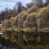 Весеннее отражение.... :: Viacheslav Birukov