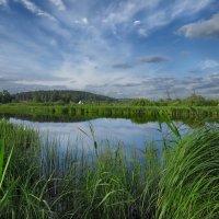 Утро на реке :: Александр Смирнов
