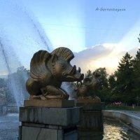 Почему именно Восточный календарь? :: Anna Gornostayeva