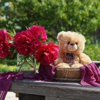 Пушистый подарочек в корзинке))) :: Элен .