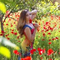 яркое лето ) :: Райская птица Бородина