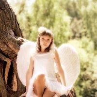 Ангел :: Николай Нестеренко