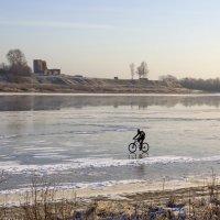 По первому льду. :: Ольга Лиманская