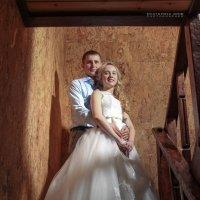 Дмитрий и Анастасия :: Екатерина Гриб