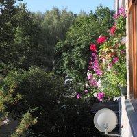 Вид с балкона :: Николай Холопов