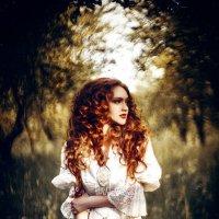 Alice in Wonderland :: Ruslan Bolgov