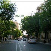 green street :: maxim