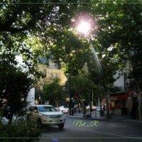 love this green street :: maxim