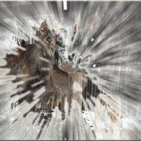 Алтайские олени :: Юлия Денискина