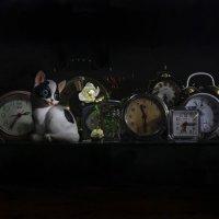 Заблудившейся во времени.... :: Svetlana Sneg