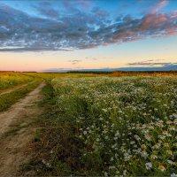 Летний вечер в деревне... :: Александр Никитинский