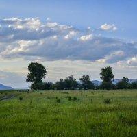 На горизонте :: юрий Амосов