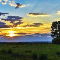 Солнце садится. :: юрий Амосов