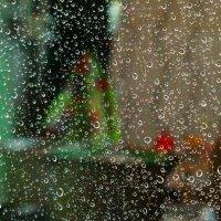 капли на стекле :: Alexandr Staroverov