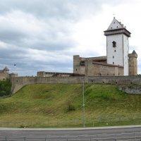 Нарвский замок и Ивангородская крепость :: Наталья Левина