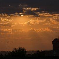 Почти африканский закат :: Николай С