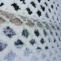 забор в шубе :: Александр Иванов