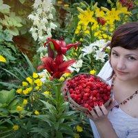 дворик, урожай ) :: Райская птица Бородина