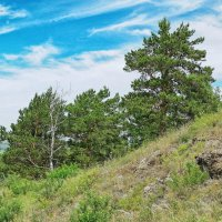 Бердские скалы :: Дмитрий Конев