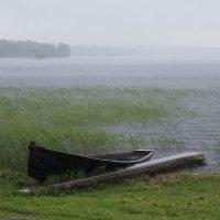 Берег Онежского озера во время дождя :: Avada Kedavra!