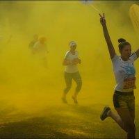 Красочный марафон :: Григорий Кучушев