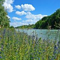 """""""...Заливные луга, голубая река –  Настоящее чудо природы...!"""" :: Galina Dzubina"""