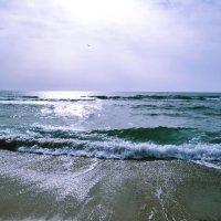 Морской пейзаж :: Swetlana V