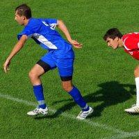 Если смотришь наш футбол, не забудь про валидол...)) :: Андрей Заломленков