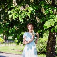 В цветущих каштанах :: Евгения Лисина