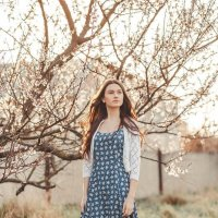Теплое дыхание весны :: Diana L.