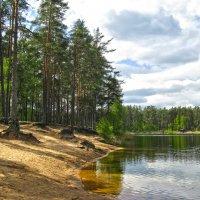 Зеленое озеро :: Наталья