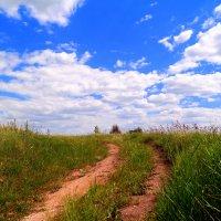 Дорога в облака :: Андрей Заломленков