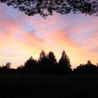 Скоро взойдёт солнце. :: Борис Митрохин