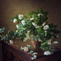 Из серии про дикие розы :: Ирина Приходько