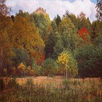 Осенние краски :: Борис Панков