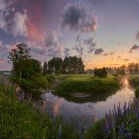 Шередарьский июнь... :: Roman Lunin